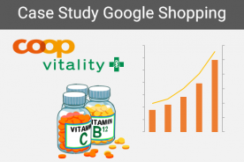 Case Study SEA Google Shopping