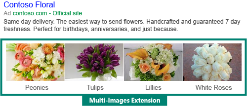 Bing Multi Image Extensions